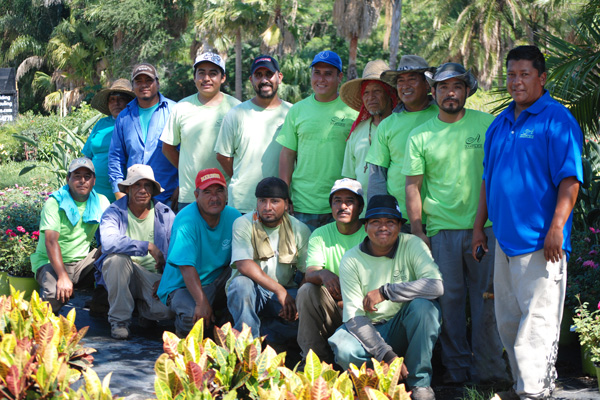 Amplex-Clearwater-Nursery-Crew